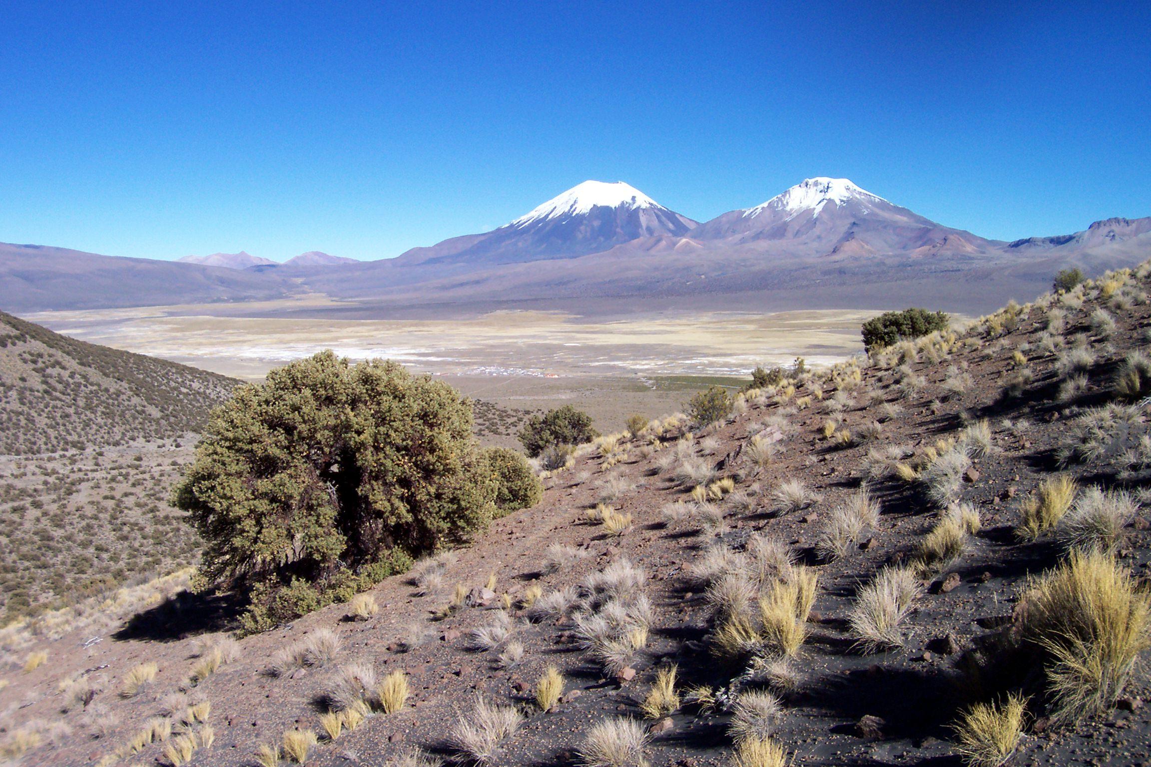 Bolivia June08 All Photos 153