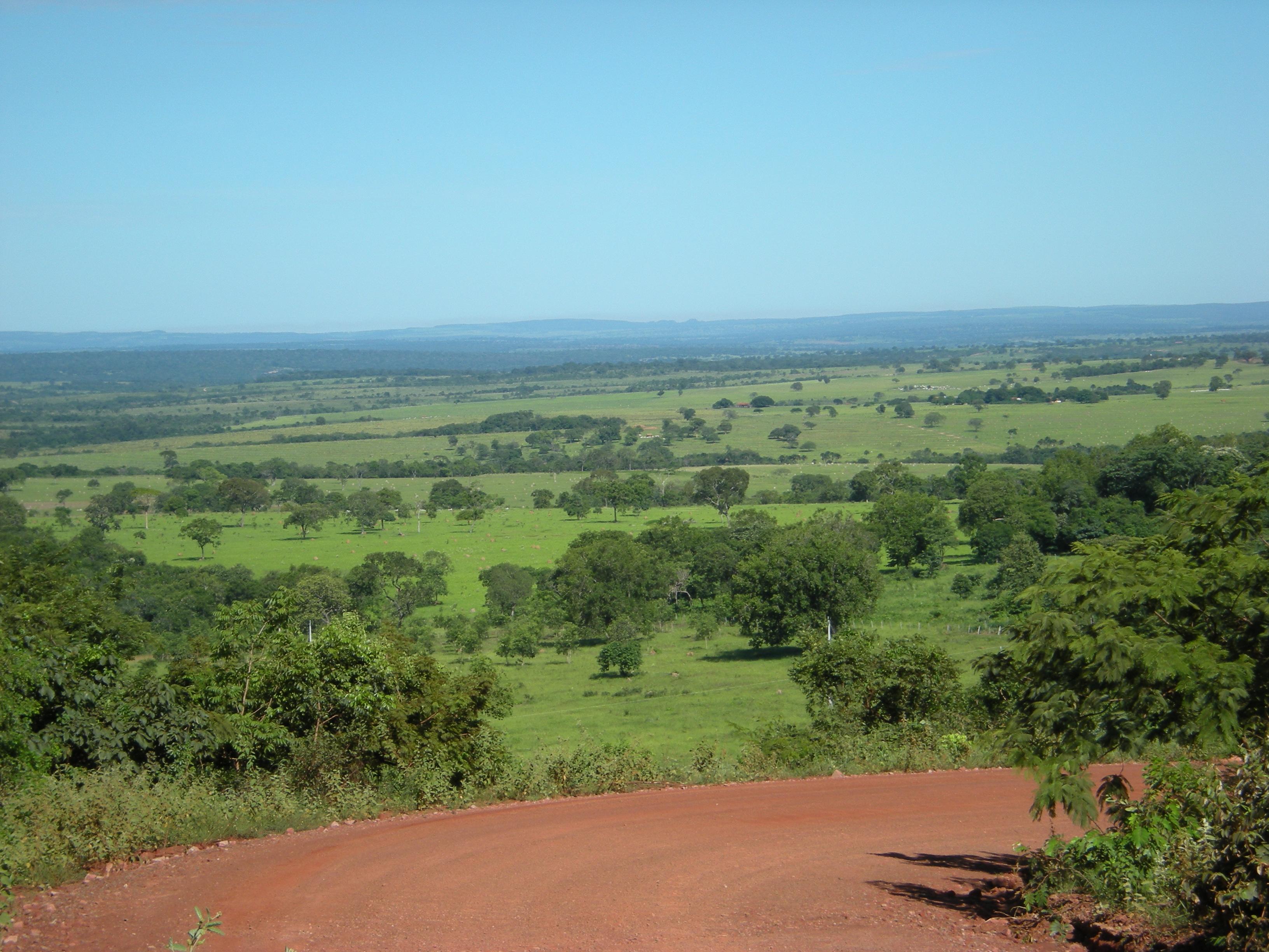 Brazil Feb 2008 044