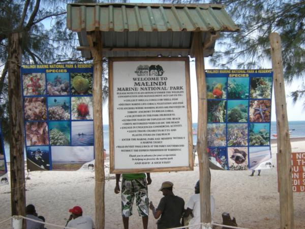 Bruce Byers Consulting Malindi Marine National Park