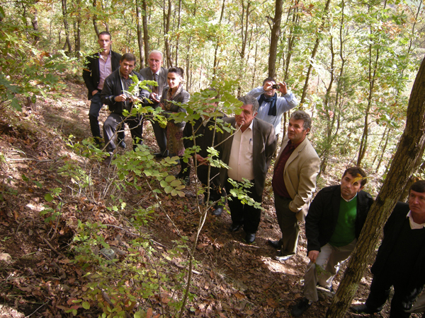 Bruce Byers Consulting - Albania Forests