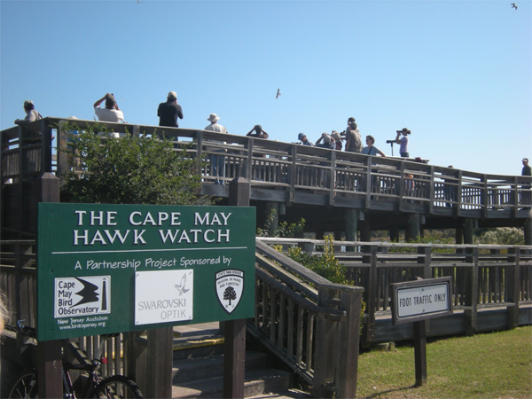 brucebyersconsulting_capemay3