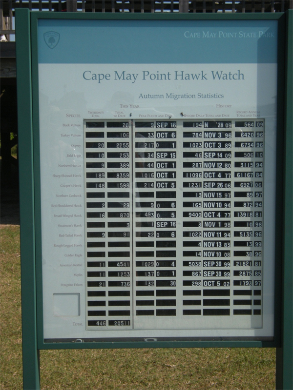 brucebyersconsulting_capemay4