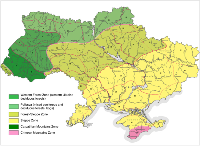 BruceByersConsulting-Ukraine20
