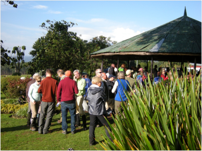 International ecotourists waiting to track gorillas and golden monkeys