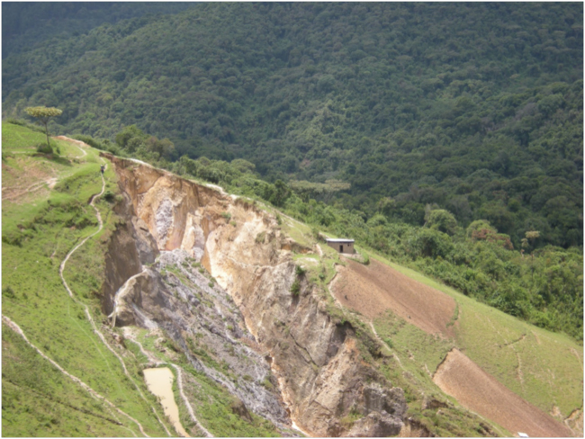 Yin and yang: illegal coltan mine on the edge of the forest