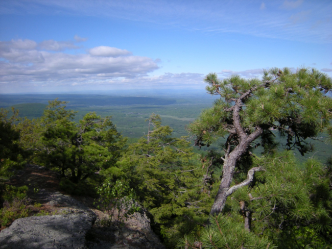 Afternoon view of the Hudson Valley from the Catskill ridge. May 2015.