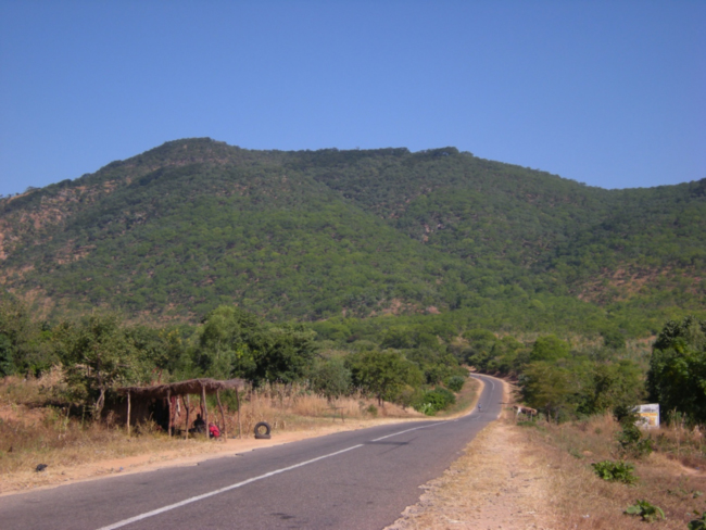 Miombo-covered ridge in the Liwonde Forest Reserve