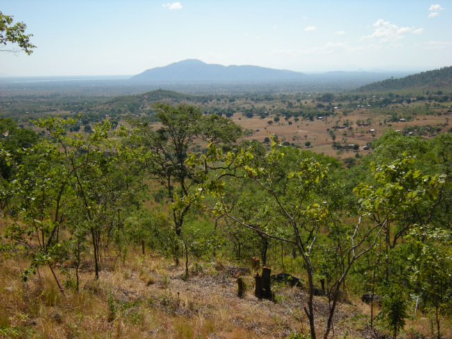 Liwonde National Park and the Shire River