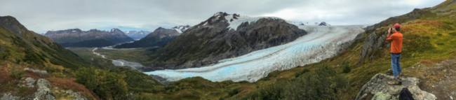 Panorama of Exit Glacier from Top of the Cliffs viewpoint Photo by J. Byers