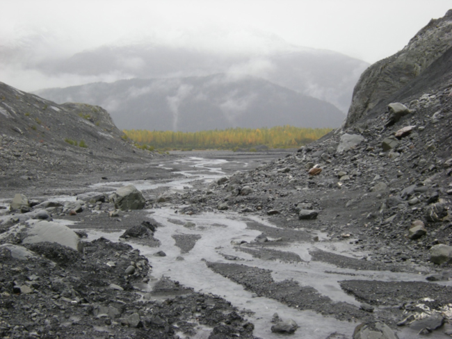View from the terminus of Exit Glacier down its old valley, September 2015
