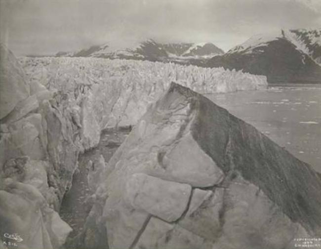 Muir Glacier, Alaska. June 1899. Edward S. Curtis.