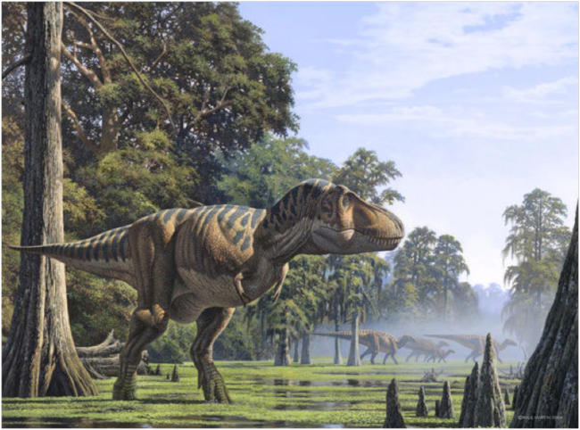 Artist's rendition of Tyrannosaurus rex from Dinopedia