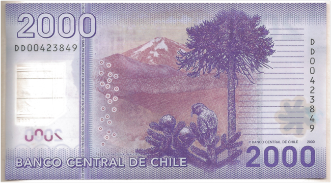 Choroy, araucaria, and Volcán Lonquimay on the Chilean 2000 peso bill