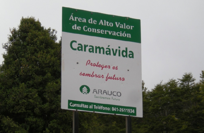 Caramávida, private protected area owned by the forestry company Arauco