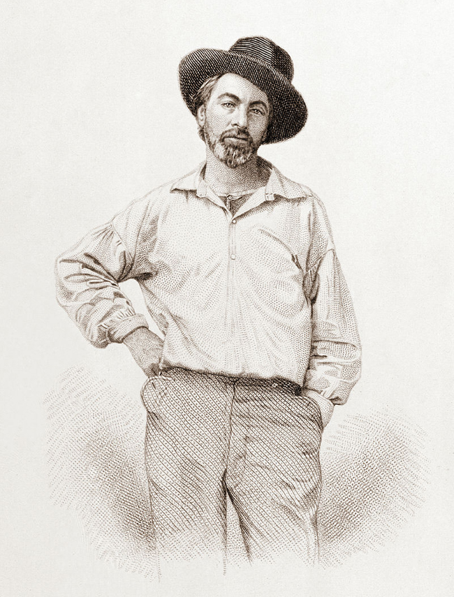 Walt Whitman, age 35, from the frontispiece to Leaves of Grass (Image courtesy of Wikipedia)