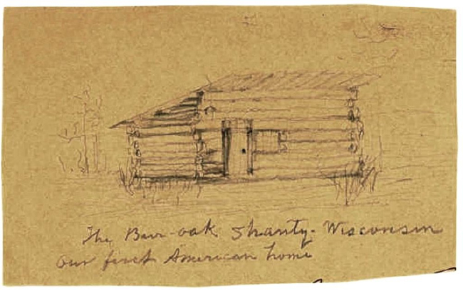 Muir's sketch of the burr-oak shanty.