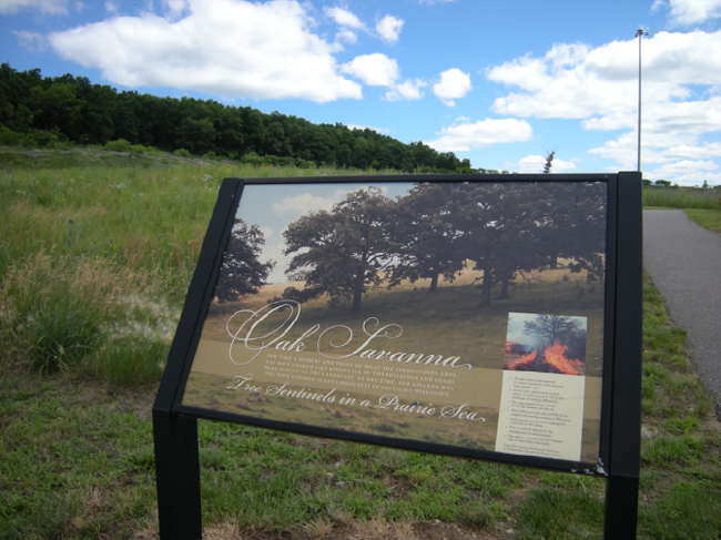 Informational sign about oak savanna and prairie restoration at rest area on Interstate 39 south of Portage