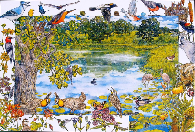 Birds of John Muir's boyhood at Fountain Lake, painting by Janet Flynn. Source: Marquette County John Muir Nature and History Route, Wisconsin Friends of John Muir.