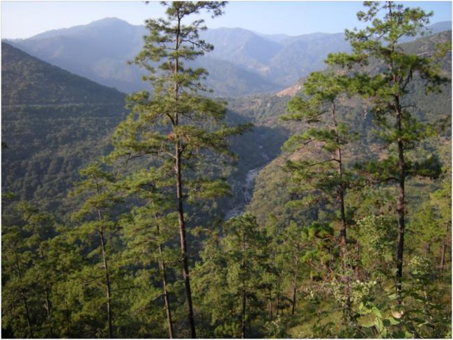 Río Pasabién below Santa Rosalia Mármol, Sierra de las Minas Biosphere Reserve