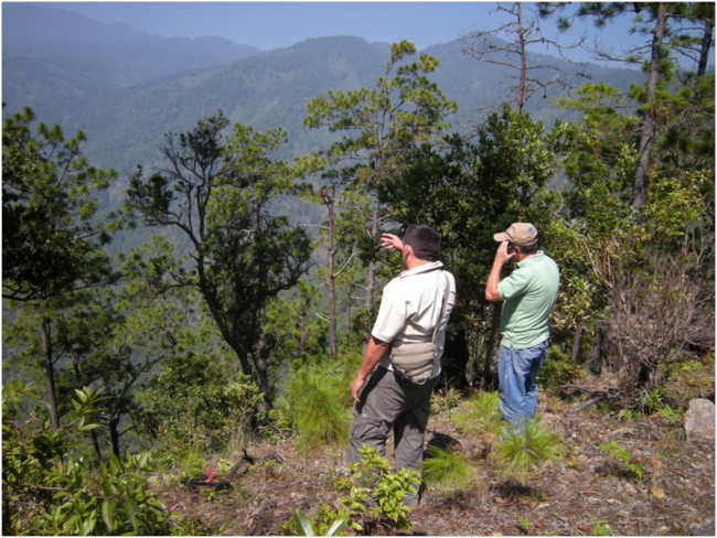 Edwin and César looking out over the watershed of the Río Pasabién