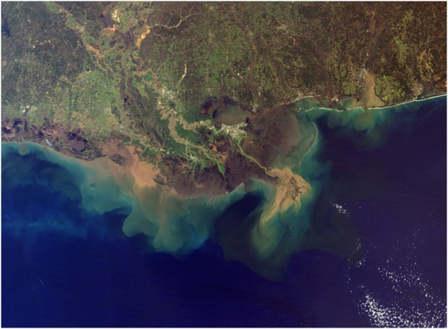 Satellite image of the Mississippi Delta; the brown sediment plume from the Mississippi River is at right, and from the Atchafalaya River to the left (west)