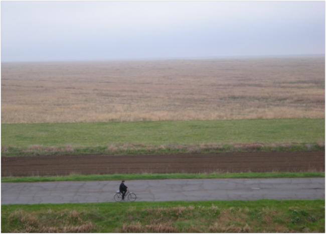 View across the ungrazed steppe of Askania Nova
