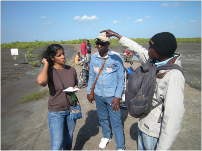 Evaluation team members Ariane Dinis and Rui Mirira interviewing a local CCAP coordinator at a mangrove restoration site in the Mirazane neighborhood of Quelimane