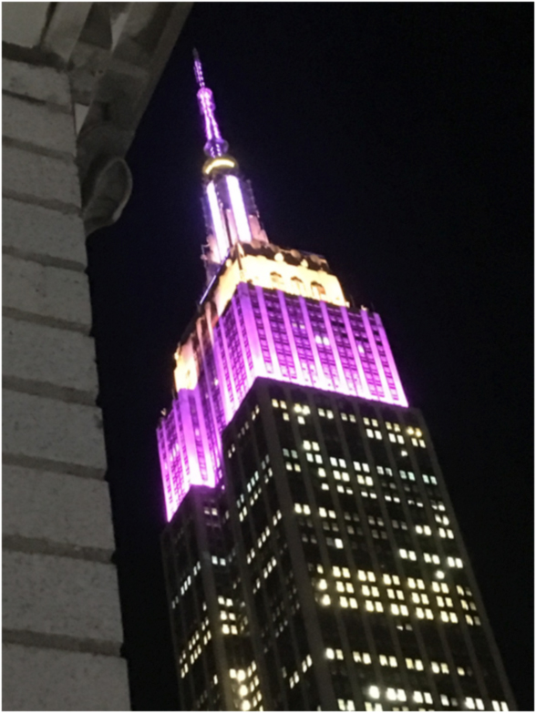 Empire State Building by Night. Photo from my hotel, Manhattan, New York. February 2018.