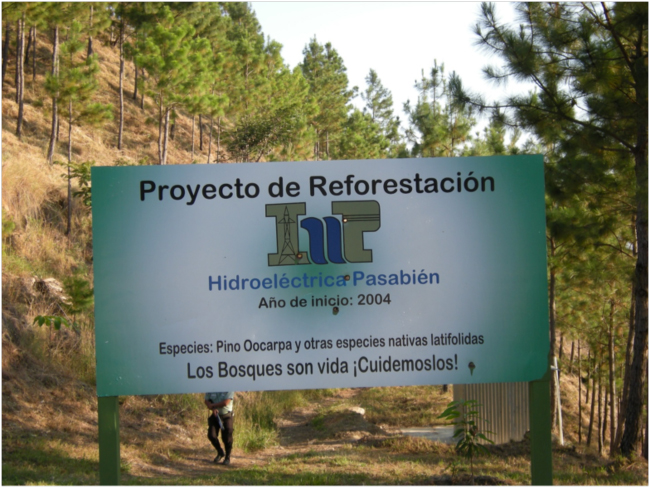 Sign for a forest restoration project of the Hidroeléctrica Pasabién, February 2016