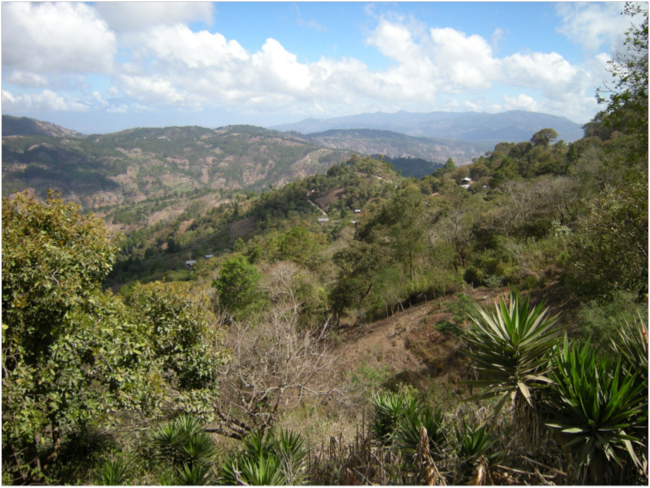 View of the landscape between San Luis Jilotepeque and San Pedro Pinula, Jalapa Department, February 2018