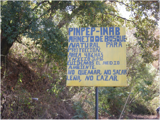 Sign announcing a PINPEP area on the road to Guatemala City, Jalapa Department, February 2018