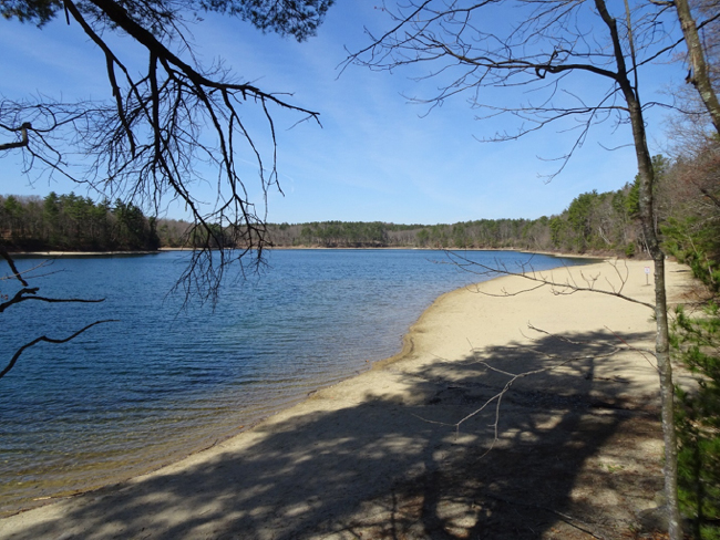 Walden Pond, 24 April 2018