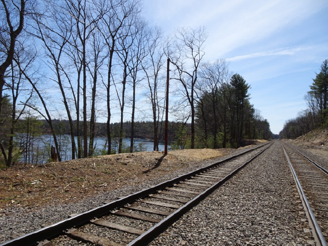Railroad tracks along the western shore of Walden Pond, 24 April 2018