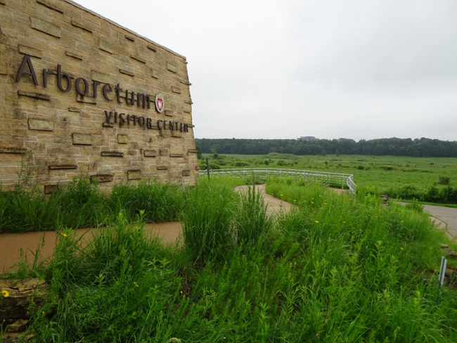 Arboretum Visitor Center overlooking Curtis Prairie, 20 June 2018.