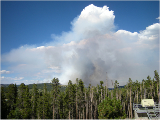 Smoke plume and pyrocumulus cloud from the Cold Springs Fire, 9 July 2016.