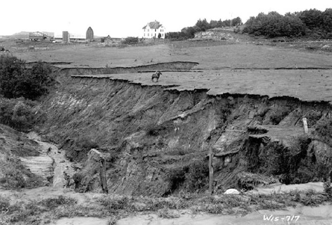 Historic photo of erosion in Coon Valley. Photo courtesy of USDA Natural Resources Conservation Service.