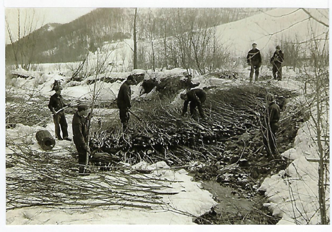 Historic photo showing erosion control measures on the Lee Farm. Photo courtesy of USDA Natural Resources Conservation Service and Jon Lee.