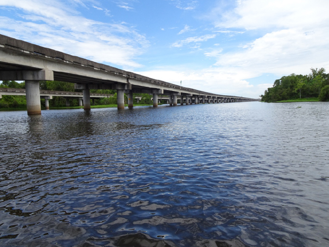 The Manchac Swamp Bridge carrying Interstate 55 from my canoe, 4 August 2018.