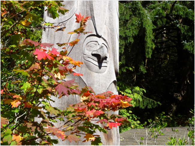 Vine maple and totem pole figure, Sitka Center