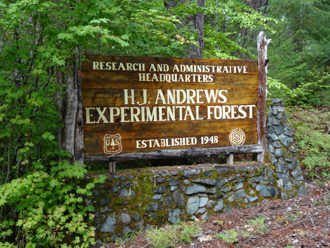 Entrance to H. J. Andrews Experimental Forest