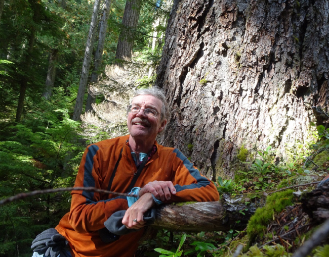 Enjoying the old-growth forest in reference Watershed #8